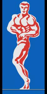 bodybuilder-153267_640